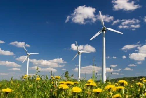 Ecology Surveys for Wind Turbine Planning Applications