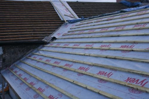 Breathable Roofing Membranes No Longer Accepted in Bat Roosts by Statutory Agencies