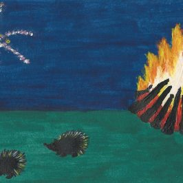 Hedgehogs On Bonfire Night