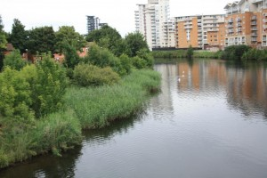 water framework directive assessment
