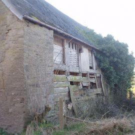 Bat Survey Ross-on-Wye