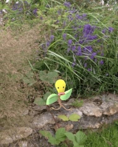 Pokémon vs Wildlife