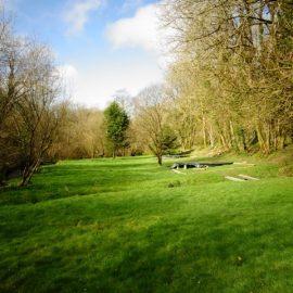 Ecology Survey Herefordshire
