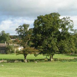 Extended Phase 1 Habitat Survey Herefordshire