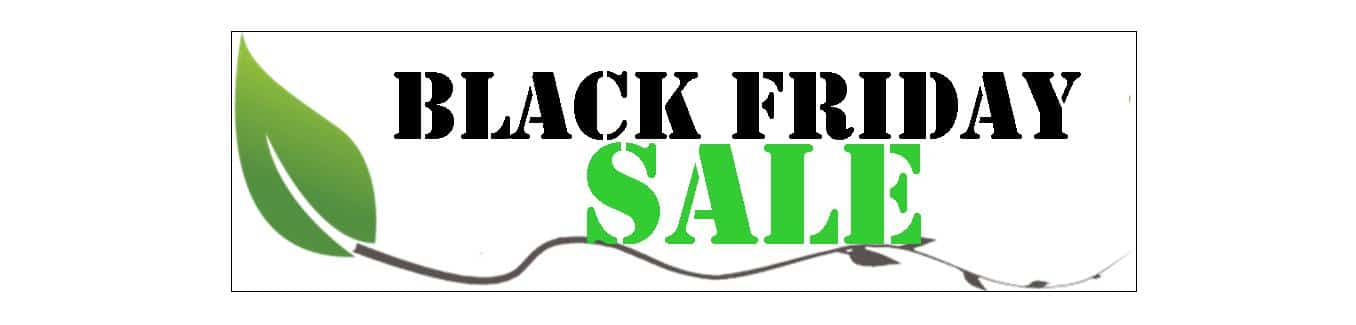 Black Friday Deal – One Day Only