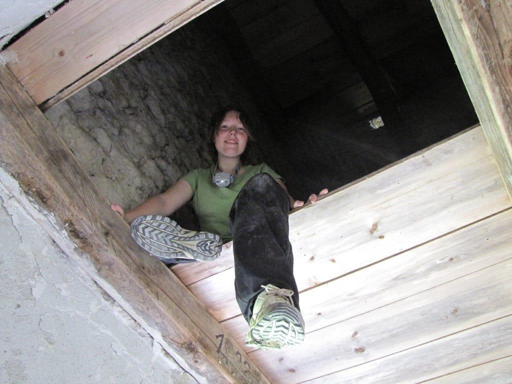 Ecologist in Loft