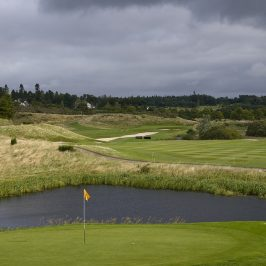 Ecological Services on Golf Course Developments