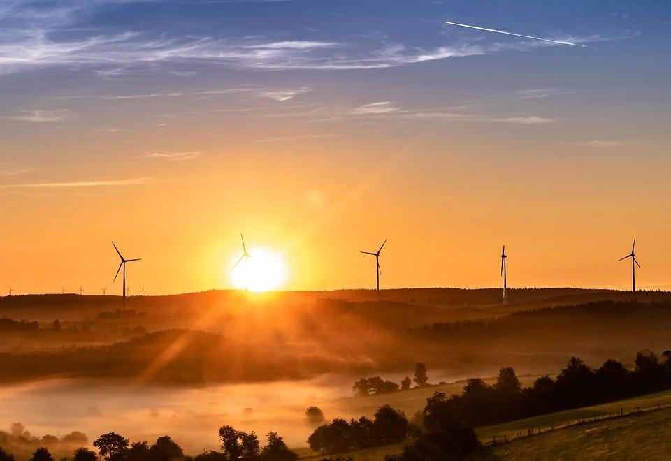 The Wind Turbine – Earth's Superhero or Nemesis? - Acer Ecology