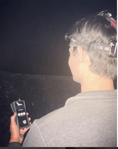 Bat Detector being used on a Bat Survey