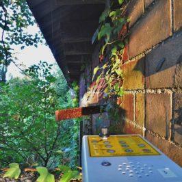 Bat Survey High Wycombe